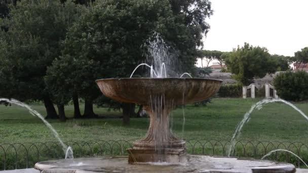 Wasserstrahlen aus den alten Retro-Brunnen unter den Pflanzen im park