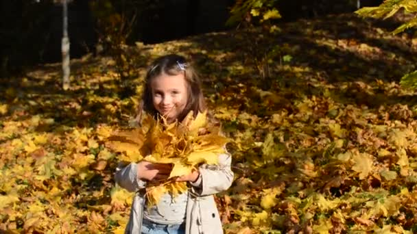 Little charming girl child throws up fallen yellow maple leaves in autumn park
