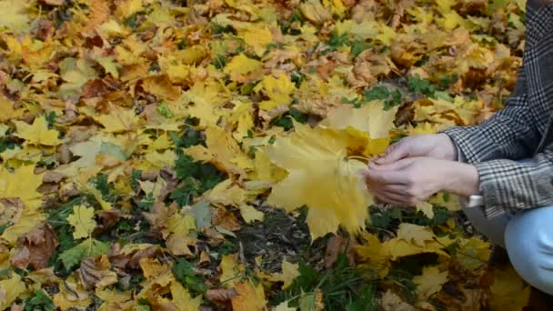 Girl sits and throws yellow maple leaves in the autumn park