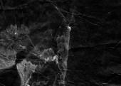 Abstraktní pozadí inkoust. Mramorové styl. Černá barva tahu textury na bílém papíře. Tapeta pro web a herní design. Grunge bláto umění. Makro snímek pera šťávy. Tmavá skvrna