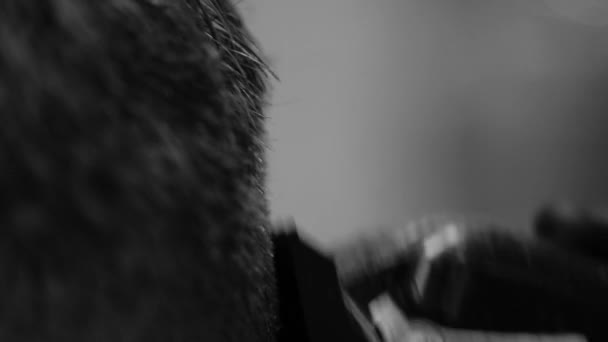 Slow motion black and white video of an electric razor.