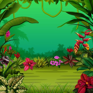 the exotic forest with the trees and the flowers
