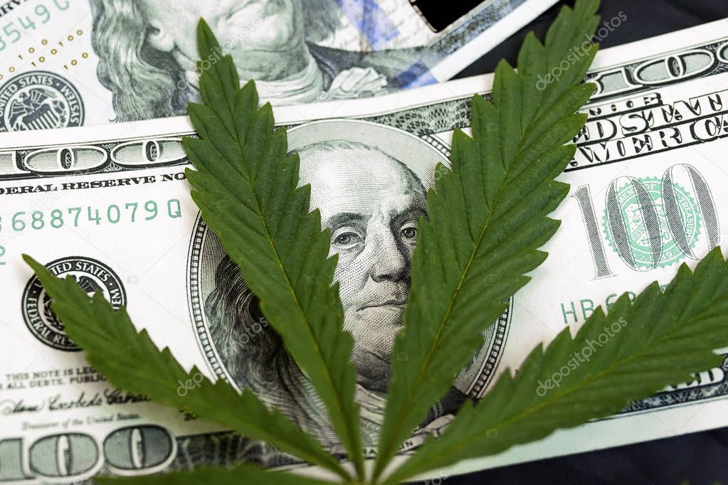Marijuana leaves on a stack of dollar bills. Money With Marijuana Leaf Close Up High Quality. Cannabis With Money Stock Photo