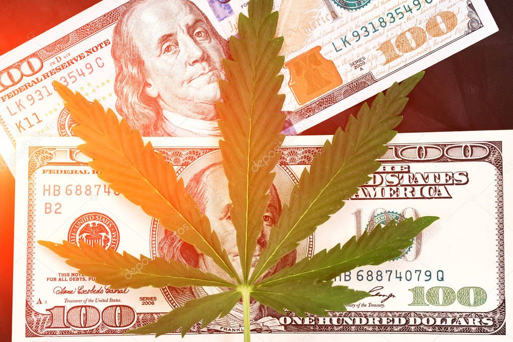 Sheet of marijuana in the sunlight . Money with marijuana leaves close. Hemp with money. Marijuana leaves on a stack of dollar bills