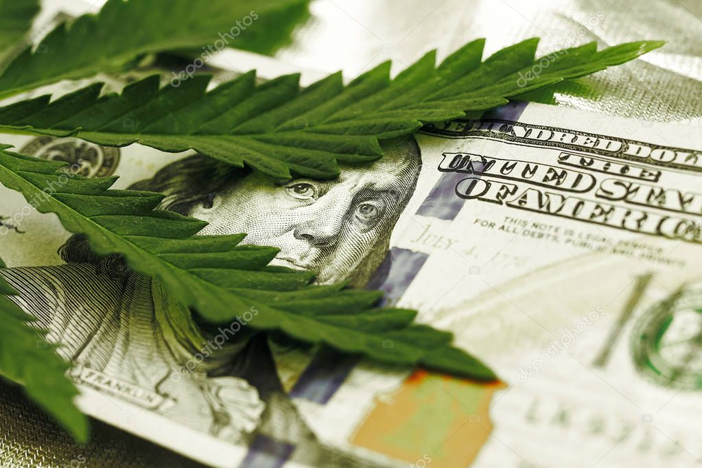 Marijuana goes out for a hundred dollar bills. Money with marijuana leaves close-up, high quality. Hemp with money