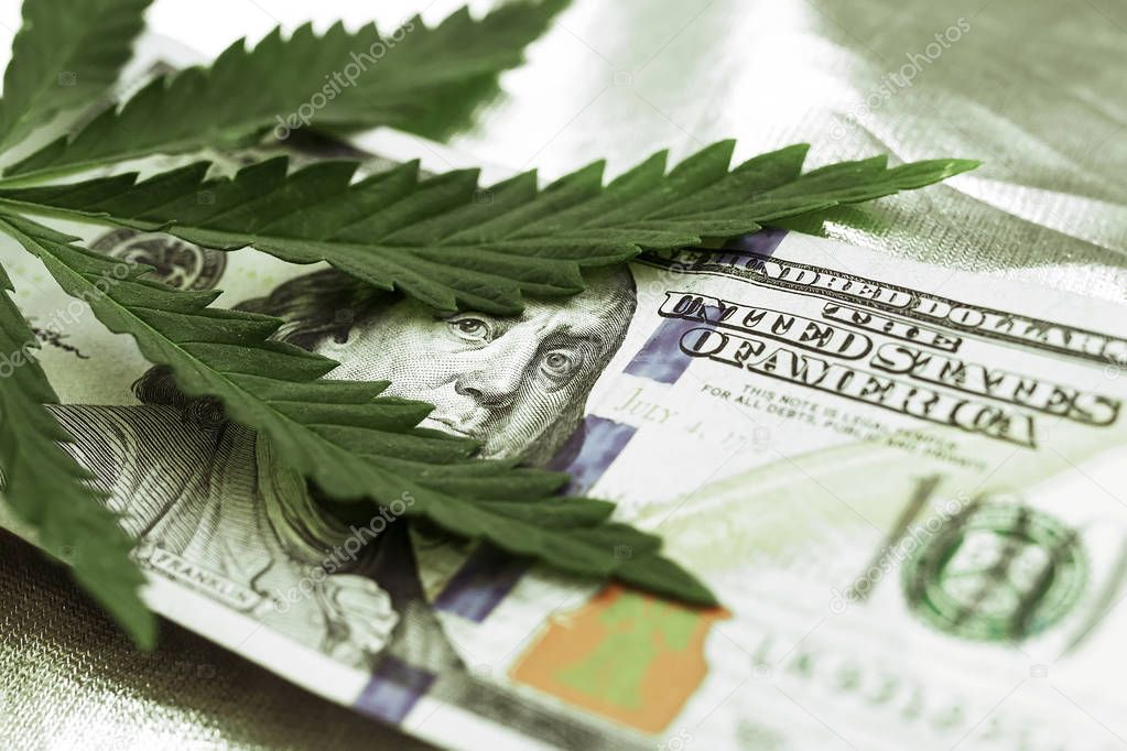 Marijuana goes out for a hundred dollar bills. Money with marijuana leaves close-up, high quality. Hemp with money. Macro