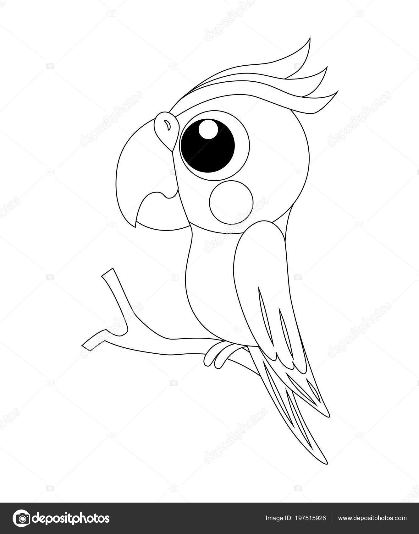 Renksiz Komik Karikatür Papağan Vektör çizim Boyama P