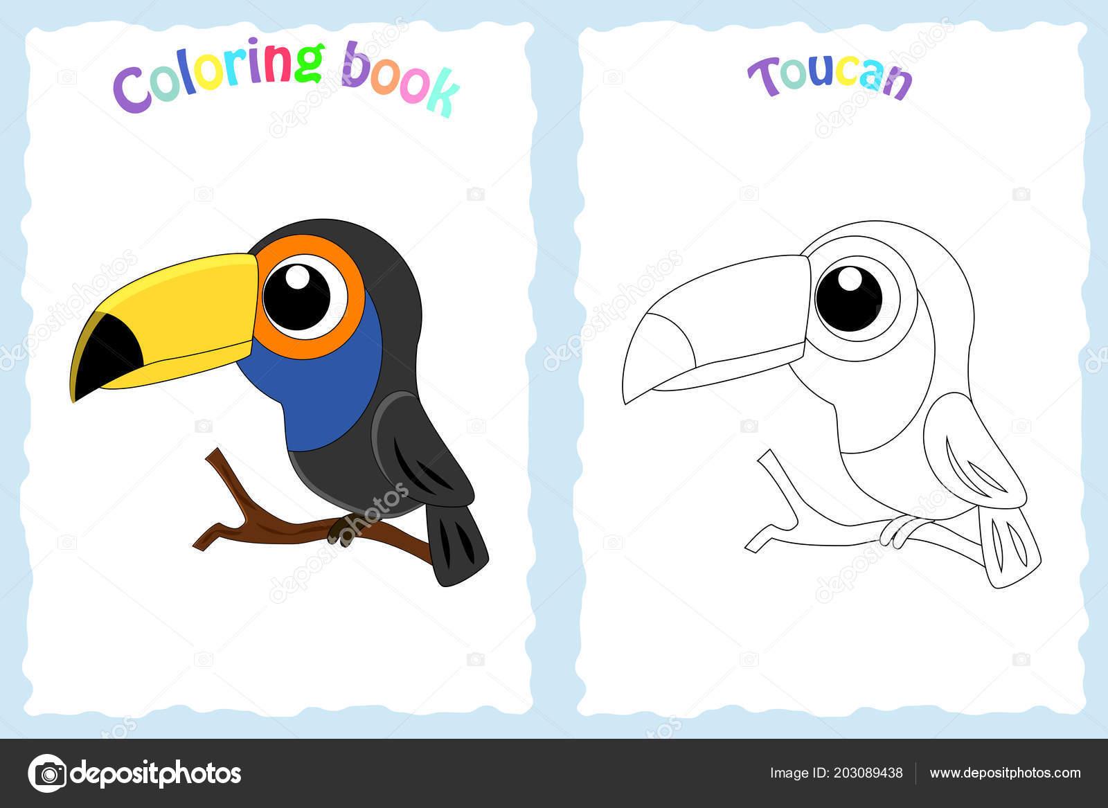Página De Libro Para Colorear Para Niños Con Colorido Tucán Y Sketc