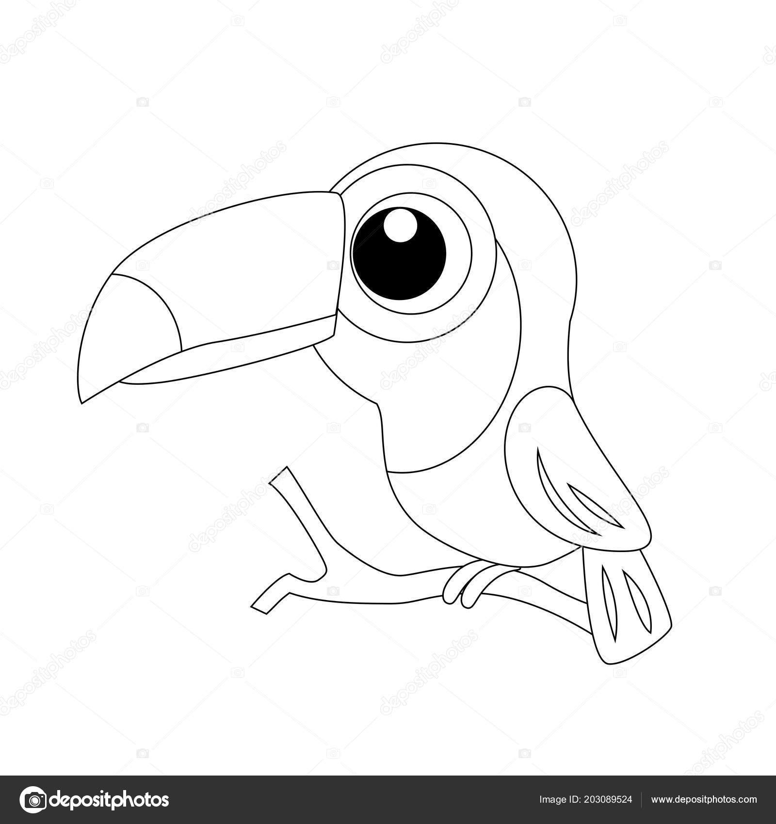 Tucán De Dibujos Animados Gracioso Incoloro Ilustración De