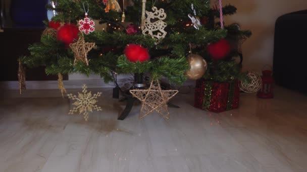 Velké nafukovací panáčka na vánoční stromeček. Ženská ruka klade vzduch vháněný sezónní postavu před osvětleným umělý vánoční stromek s světla a barevné dekorace