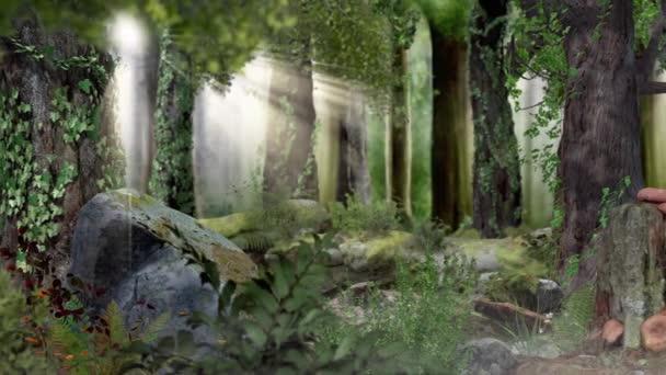 Kouzelný pohádkový les se sluncem, kamera sleduje motýlka, fotorealistická 3D vykreslení
