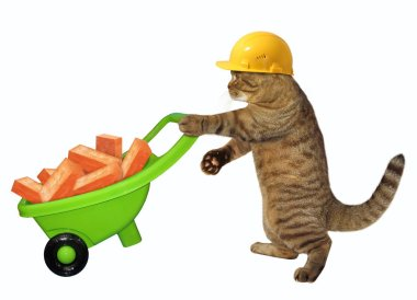 The cat laborer in a safety yellow helmet pushes the green wheelbarrow with red bricks. White background.