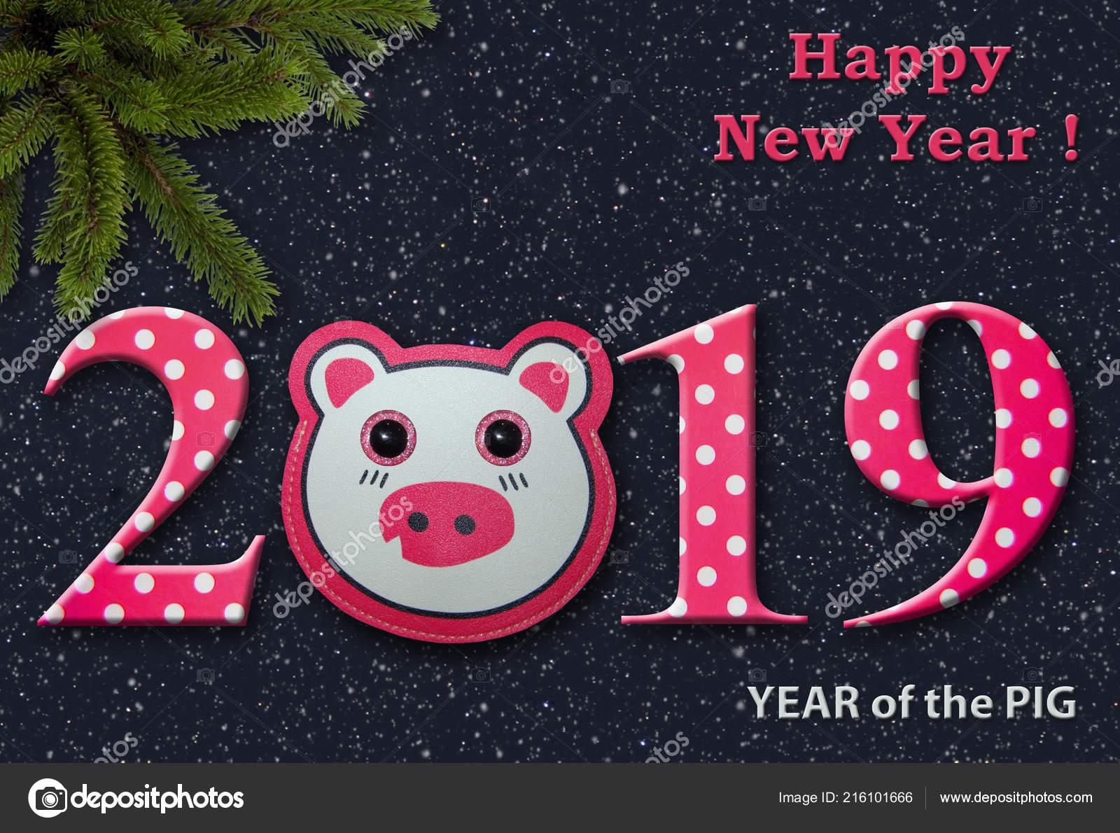 Die Lustige Neujahr 2019 Grußkarte Mit Einem Spielzeug Schwein Nacht