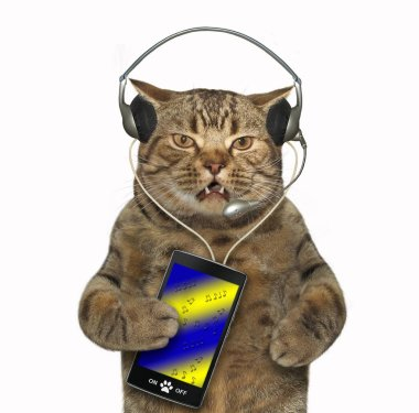 The cat in headphones is listening to music. White background.