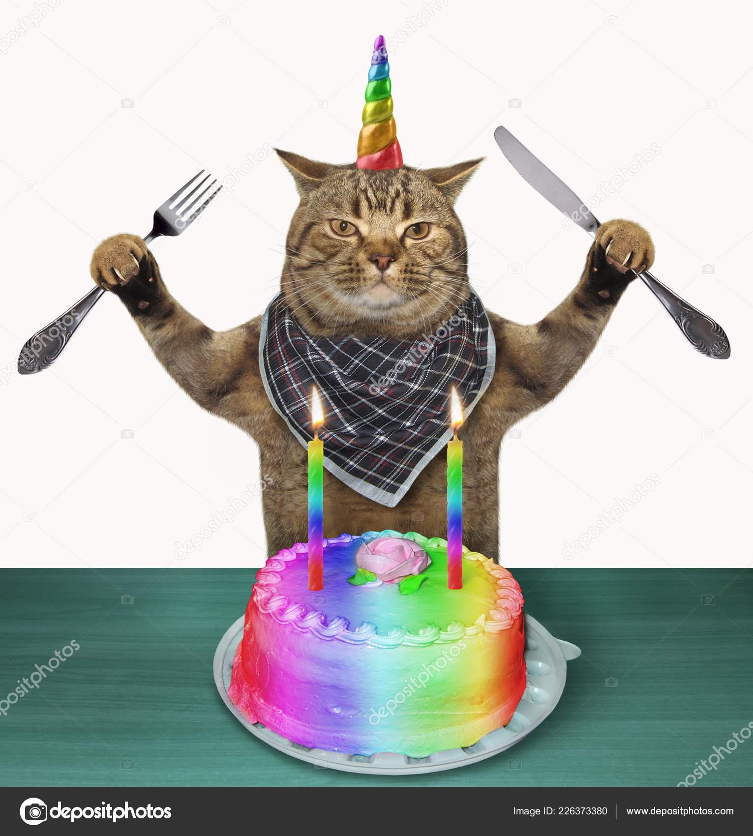 Licorne Chat Avec Couteau Une Fourchette Manger Gâteau Anniversaire