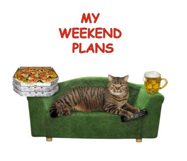 The beige cat is lying on a stylish green sofa. A tv remote control, a mug of light beer and  boxes with pizza are next to him. My weekend plans. White background. Isolated.