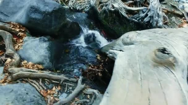 Mountain creek with clear water in autumn nature reserve. Fresh spring water