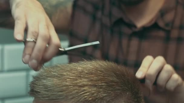Hairdresser cutting hair while client sitting in chair at barbershop