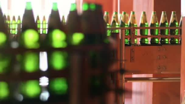 Automated production line with green glass bottles. Beer packing line at factory
