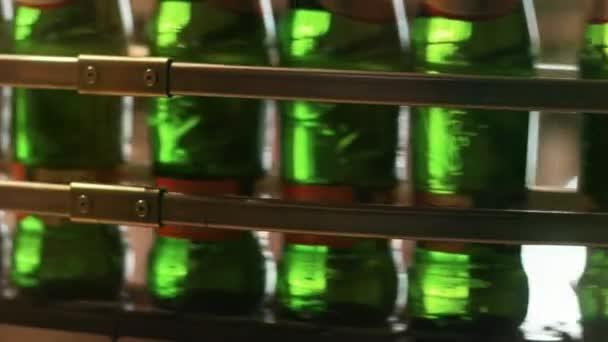 Beer production line. Close up of brewery conveyor belt. Beer bottles moving on manufacturing line. Close up brewery factory production line. Beer packaging line
