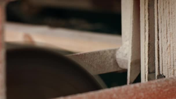 Wooden billets sawed with circular saw on automated production line at sawmill