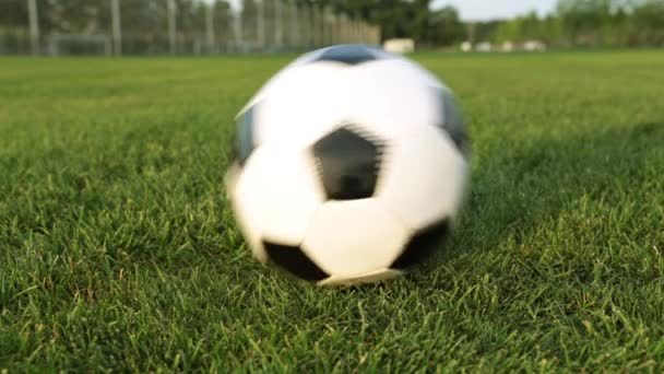 Soccer ball on a green lawn. Football ball on the green grass.
