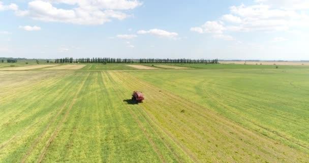 Kombajn v oblasti sklizně. Farma, zemědělství, letecké fotografie