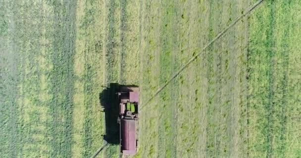 Anténa: spojit kombajn jede do pole. Farma, zemědělství.