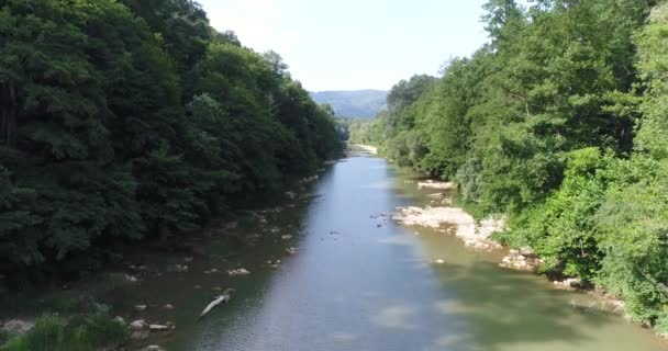 Letecká fotografie, klidná řeka v lese. Příroda, Les a řeka