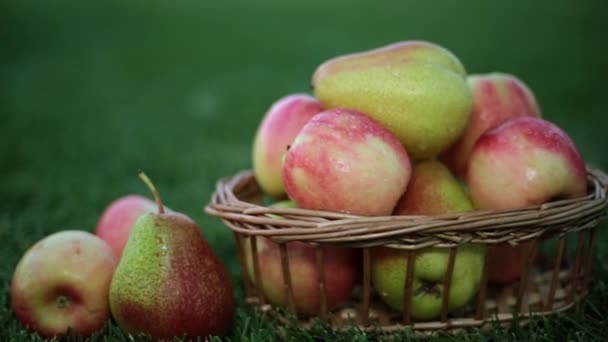 Apples and pears in a basket on the grass. Fruit basket.