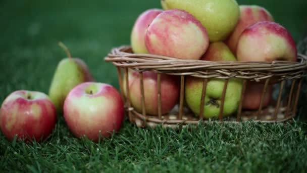 Apples and pears in a basket on the grass.