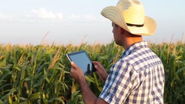 Muž farmář v poli s tabletem