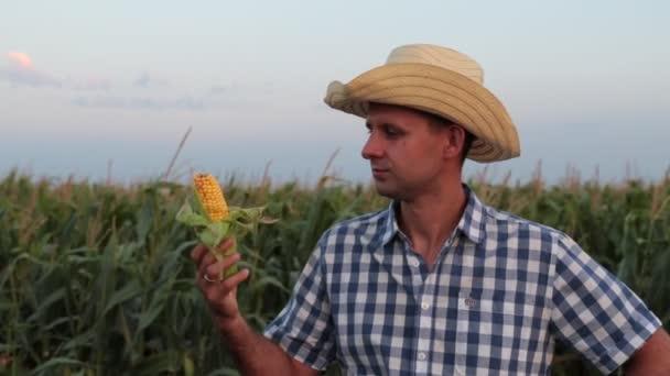 Mladý muž farmář v poli kukuřici.