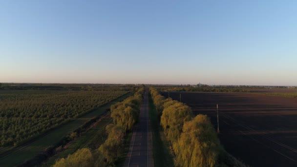 Dálnice při západu slunce. Venkovské silnici a stromy