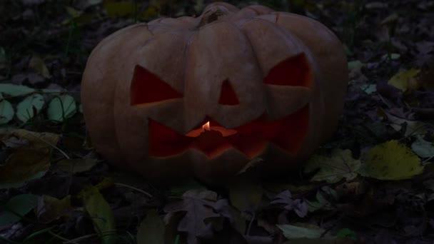Strašidelné dýně, symbol podzimního svátku Halloween