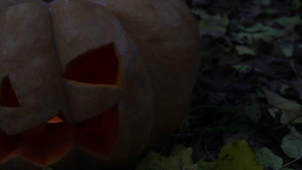 Jack-o-lantern dýně. Halloween dýně zlo na tmavém pozadí
