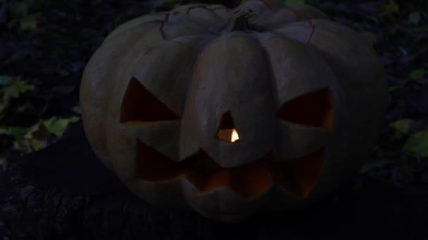 Halloween dýně zlo na tmavém pozadí. Jack-o-lantern dýně