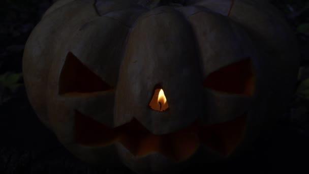 Félelmetes tök sötét háttér előtt, a szimbólum a Halloween.