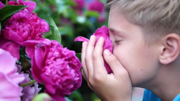 A Little Cute Baby Gently Enjoys The Smell Of Flowers The Child