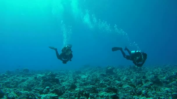 INDIAN OCEAN, MALDIVES, ASIA - MARCH 2018: Two scuba divers man and woman swim on current, over a coral reef - Indian Ocean, Fuvahmulah island, Maldives, Asia