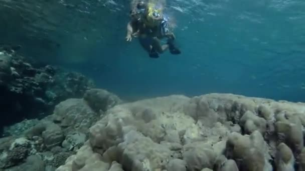 Woman and little boy in mask and snorkel swim on the surface of water near coral reef at look at on tropical fish (Low-angle shot, Underwater shot, 4K / 60fps)