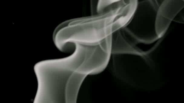 Na černém pozadí se pomalu zvedá tenký pramínek šedého kouře. Černobílý kouř vanoucí odspodu nahoru. Closeup