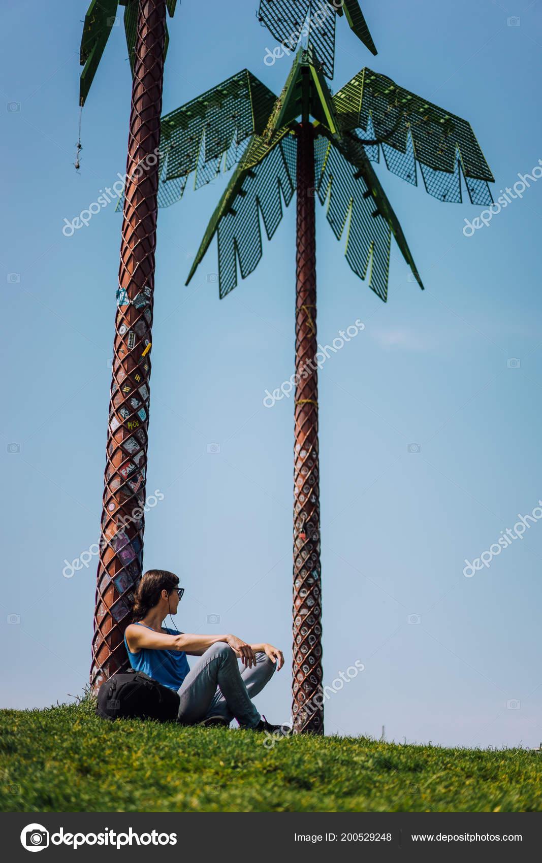 palmen kaufen hamburg