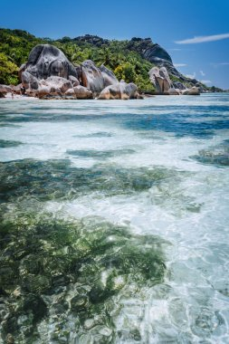 Shallow water with algal plants in front of unique Anse Source DArgent tropical beach, La Digue Seychelles. Luxury exotic travel concept