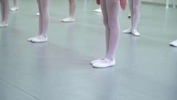 closeup legs of little ballerinas group in white shoes practicing in ballet school slow motion