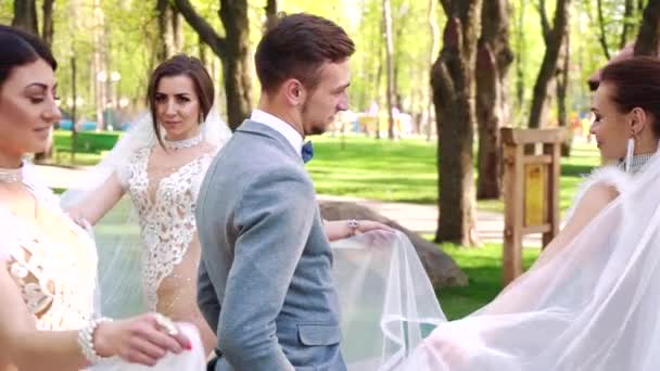female dancers in bridal costumes walk around man in groom suit in sunny park