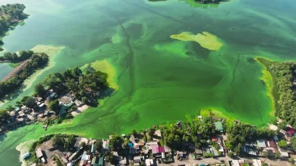 anténa široké řeky zamořená zelenými řasy s rybářskými domy na břehu