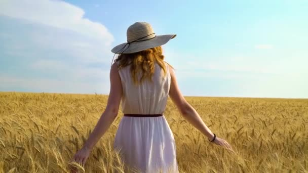 back view of young woman in dress and big hat walking on wheat field in summer