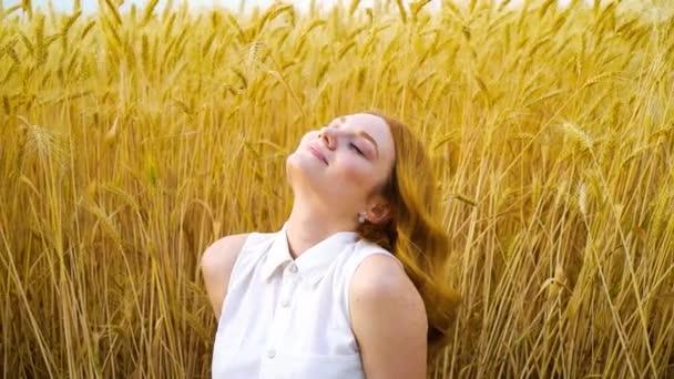 portré nyugodt vörös hajú nő nap álmodik, amikor ül a búza mező