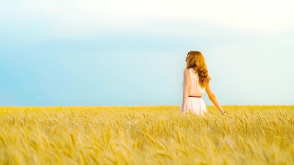 happy woman in golden wheat field with blue sky on background with copy space